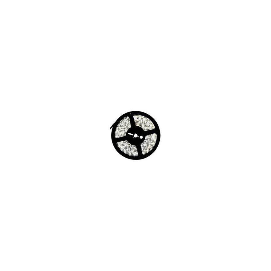 Fita de Led Alto Brilho SMD5050 - 12V - RGB