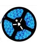 Fita de Led Alto Brilho SMD5050 - 12V - Azul